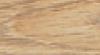 Turner Oak